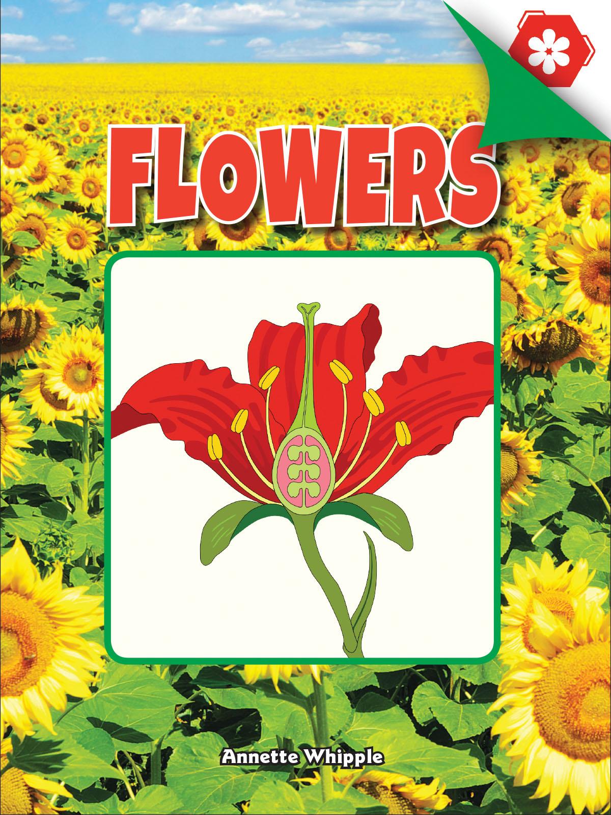 Cover for Annette Whipple's book Flowers